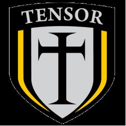 Подвески для скейтборда Tensor